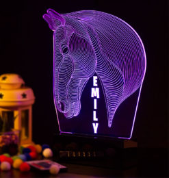 3d horse head night light room2