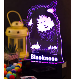 Sheep Valais Black Nose night light room1